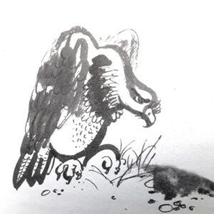 Брат-юннат-Иллюстрация-2