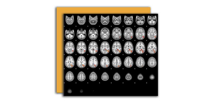 Стимул для развития мозга
