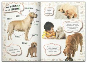 Моя-первая-книга-о-животных Собаки