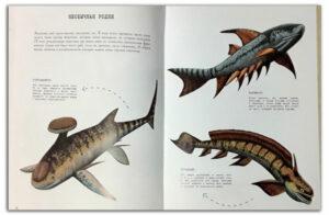 От тираннозавра к петуху